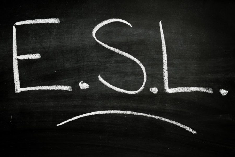 To+ESL+or+not+to+ESL%3F