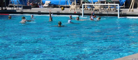 Dia De Los Muertos Water Polo Tournament